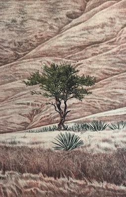 "Israel Nazario. Litografía Impresión 46 x 30 cm Papel 56 x 40 cm ""Sin título"" -Carpeta Mezcal-"