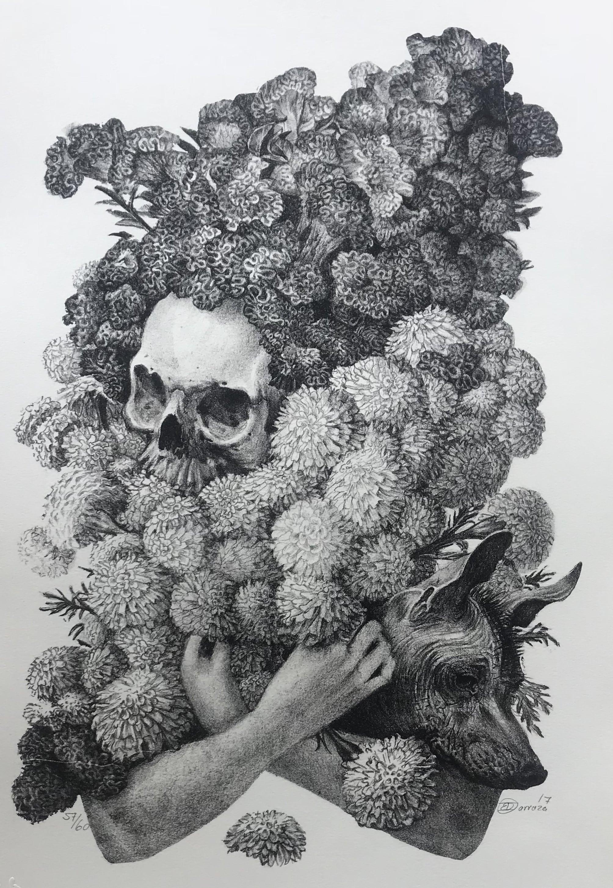 Daniel Barraza. Sin Título (CARPETA MUERTA)Litografía Impresión 28x46 cm Papel 38x56 cm