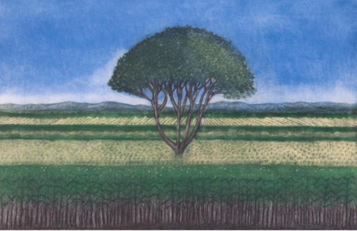 Abelardo LópezHuamuche. Aguafuerte, aguatinta, barniz dulce y crayón litográfico  Impresión 33x50 cm Papel 52x69 cm
