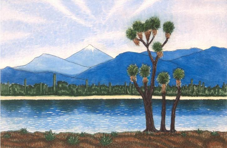 Guillermo Pons. Aguafuerte, aguatinta. Citlaltélpetl desde la biósfera.  Papel 52 x 69 cm. Impresión 33 x 50 cm
