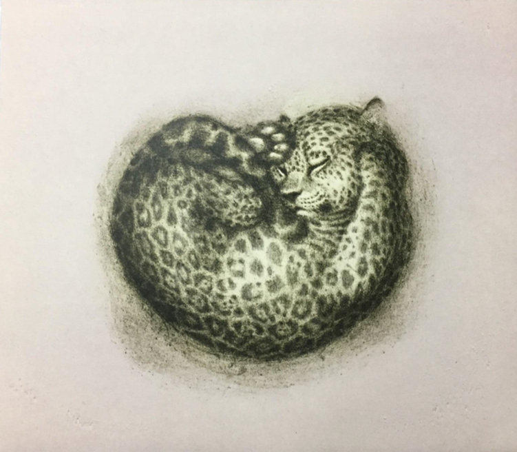 """Gatito Mexicano""   | Daniel Barraza.  |    Litografía.  25 x 30 cm."