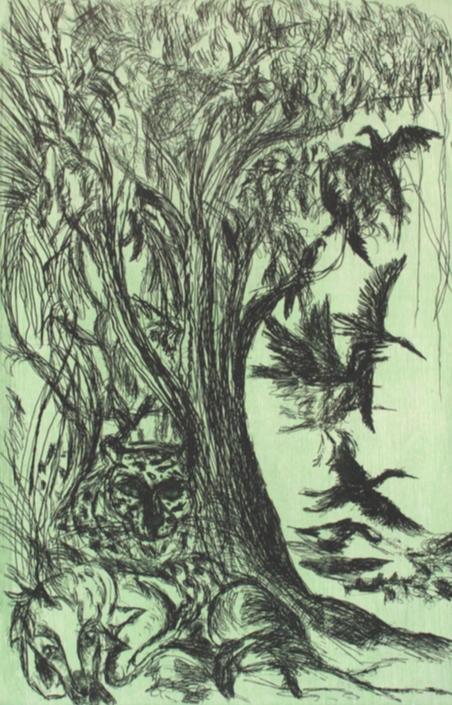 Raúl Herrera. Pájaros en la reserva. Agua fuerte y madera. Impresión 50 x 33 cm. Papel 69 x 52 cm.